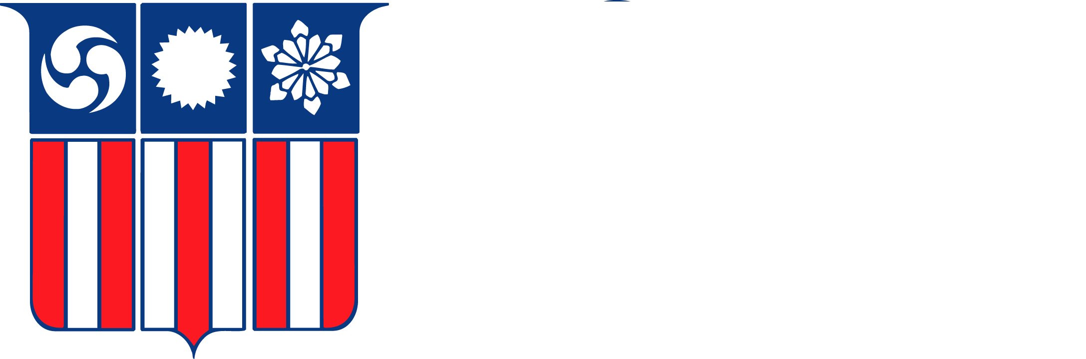 Best Roofing Hamilton D Angelo Amp Sons Company Repair