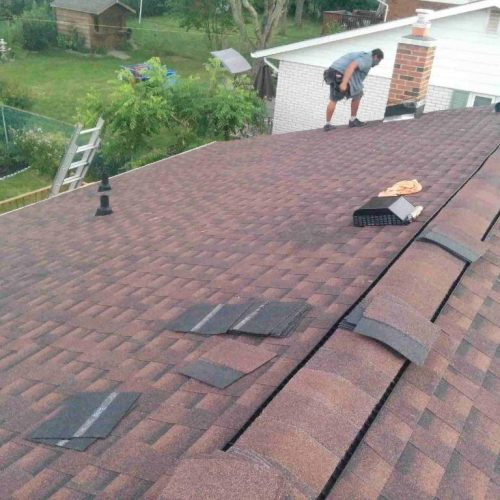 How to Remove Green Moss from Roof Shingles