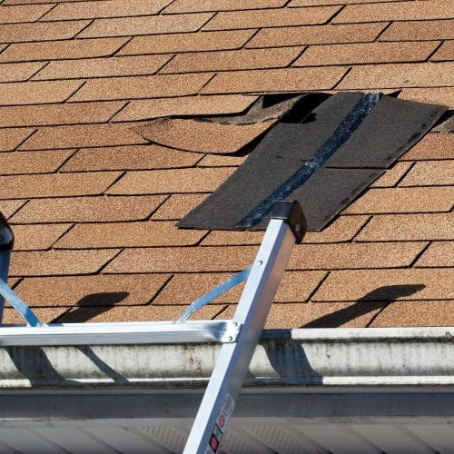 Roofing Materials Comparison Guide D Angelo Amp Sons