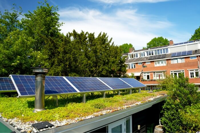 Green Roofs in Toronto – Advantages and Disadvantages of Green Roofs